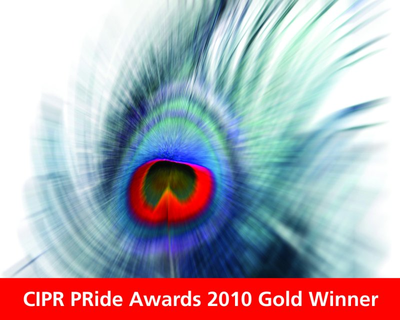 Outstanding Small Consultancy Gold Winner 2010